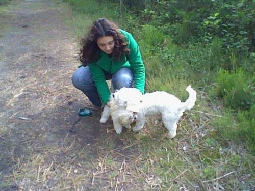 moi et mes chien
